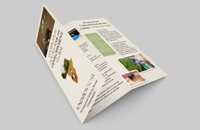 Noar Foundation Brochure